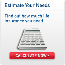 Aaa Life Insurance Quote 05