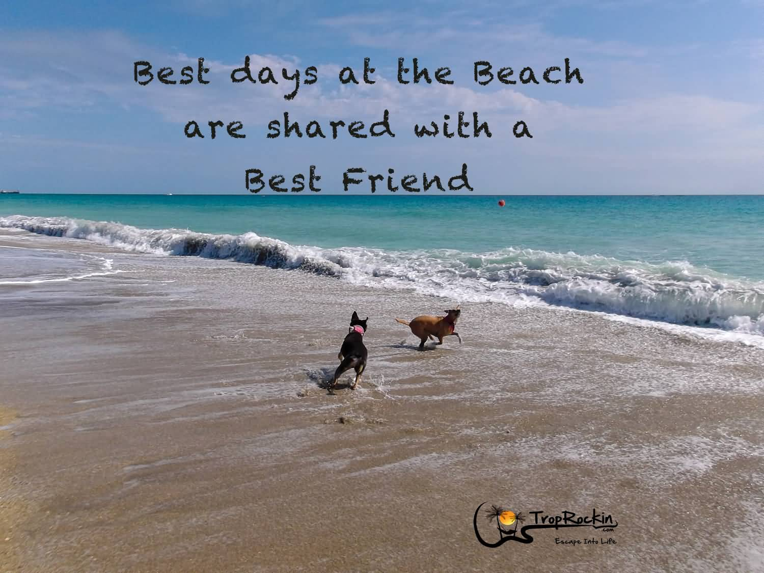 Beach And Friends Quotes Meme Image 19 Quotesbae