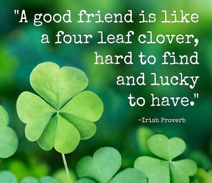 Beautiful Quotes About Friendship 02