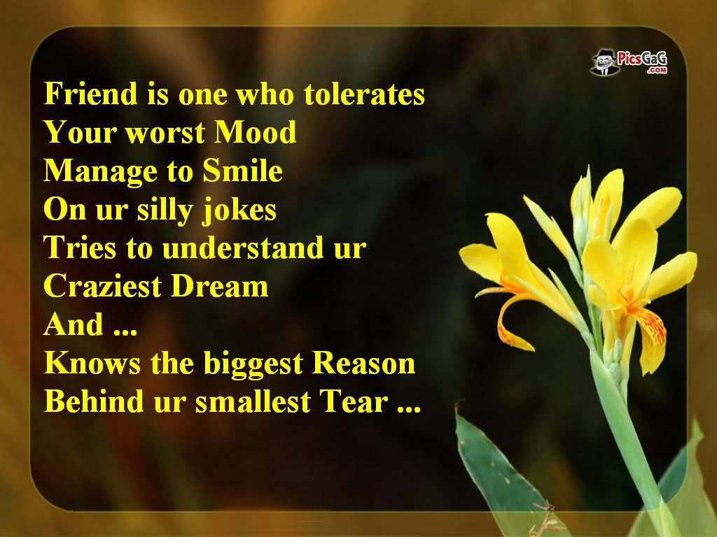 Beautiful Quotes About Friendship 04