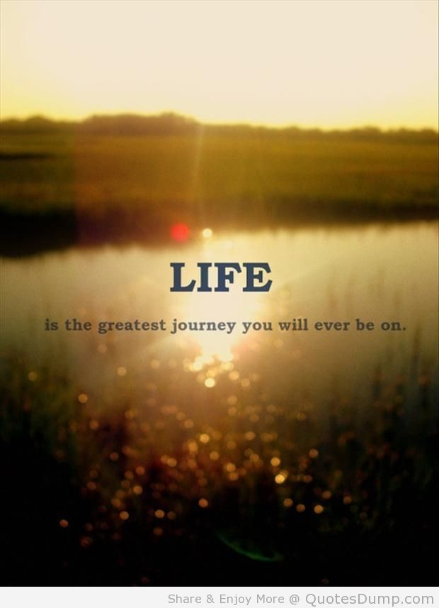 Best Life Quotes Of All Time 60 QuotesBae Amazing Best Sayings Of All Time About Life