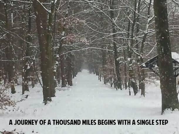 Cute Snow Quotes Meme Image 18