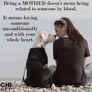 Dog Quotes Pinterest Meme Image 03