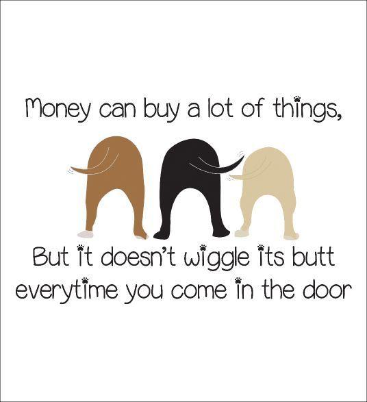 Dog Quotes Pinterest Meme Image 04