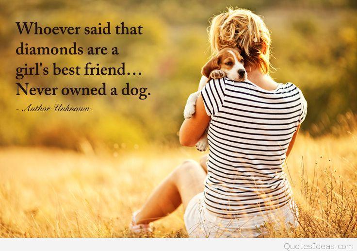 Dog Quotes Pinterest Meme Image 15