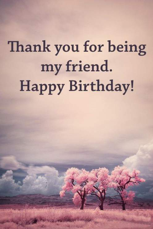 Friend Birthday Quotes Meme Image 06