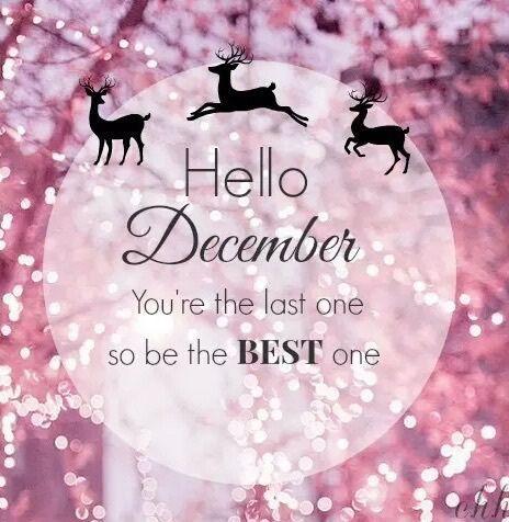 Hello December Quotes Meme Image 05