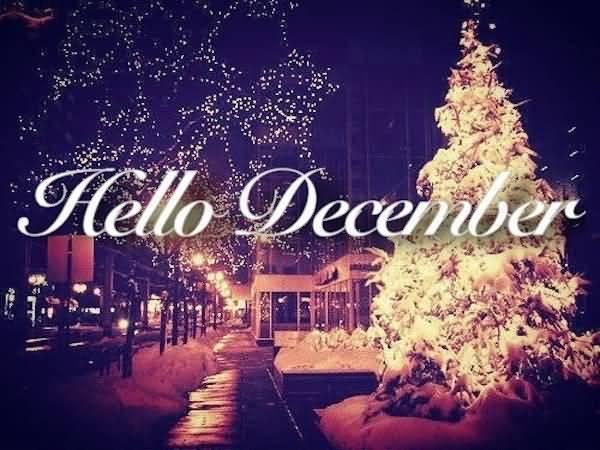 Hello December Quotes Meme Image 13