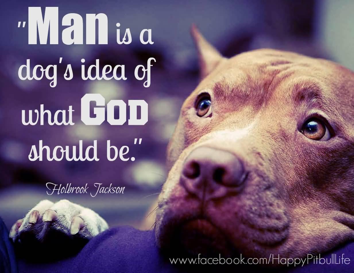 Pitbull Dog Love Quotes Meme Image 20