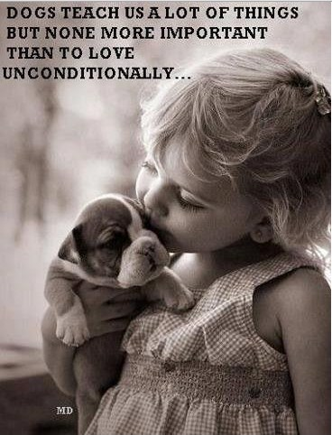 Puppy Love Quotes Meme Image 10