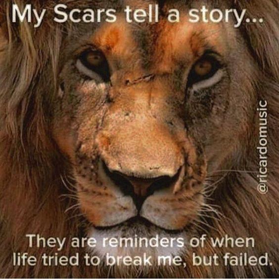 Quotes About Lions Meme Image 07
