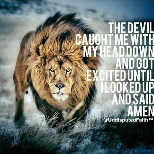 Quotes About Lions Meme Image 13