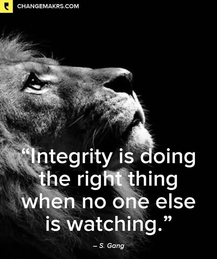Quotes About Lions Meme Image 14
