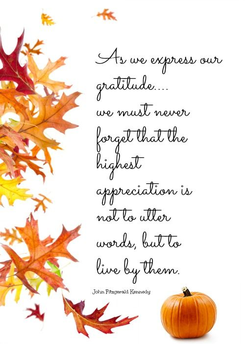 Thanksgiving Quotes Images Meme Image 06