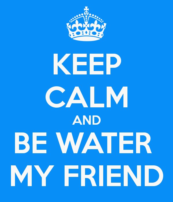 Be Water My Friend Quotes 11