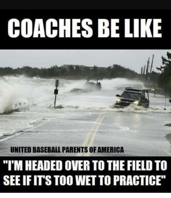 Best baseball coach meme photo