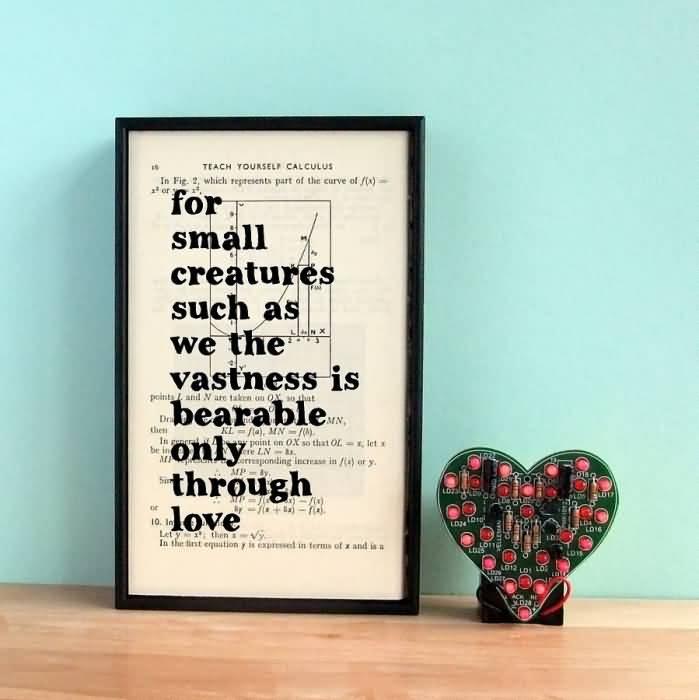 Carl Sagan Love Quote 05