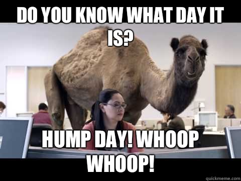 Do You Know What Day It Is Hump Day! Whoop Whoop!