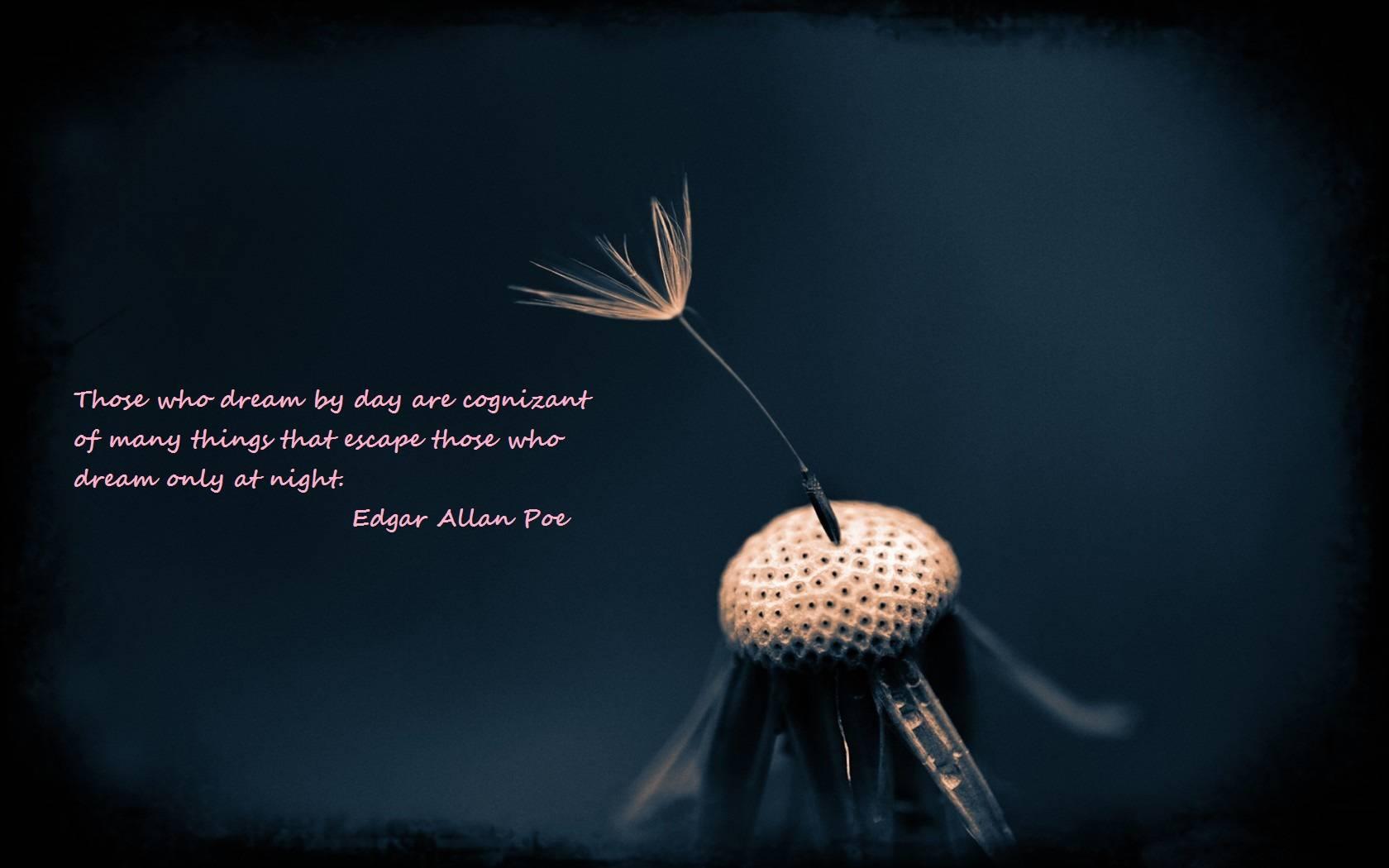 Edgar Allan Poe Life Quotes 20