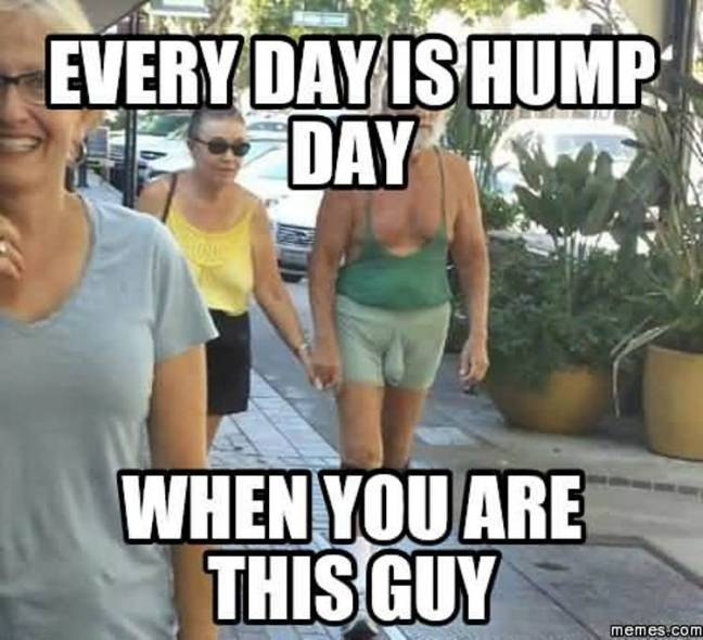 Every Day Is Hump Day When You Are This Guy