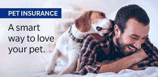 Farmers Life Insurance Quote 16