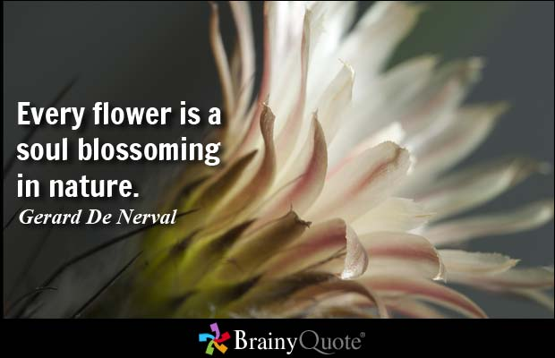 Flower And Love Quotes 08