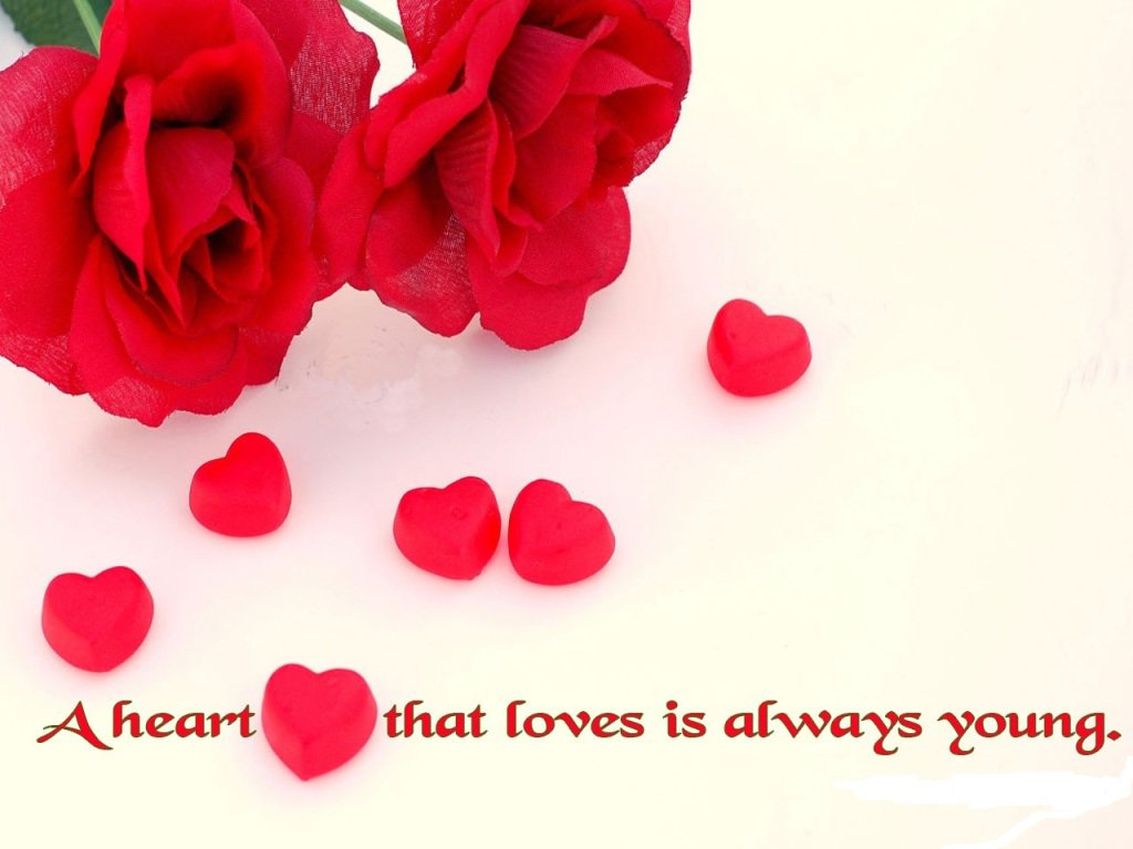 Flower And Love Quotes 17