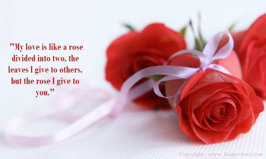 Flowers Love Quotes 01