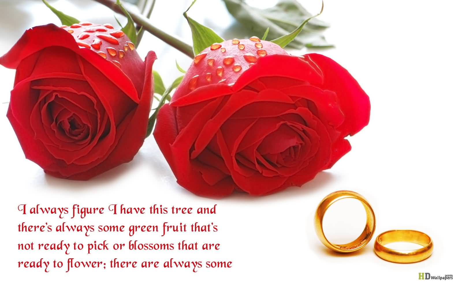 Flowers Love Quotes 08