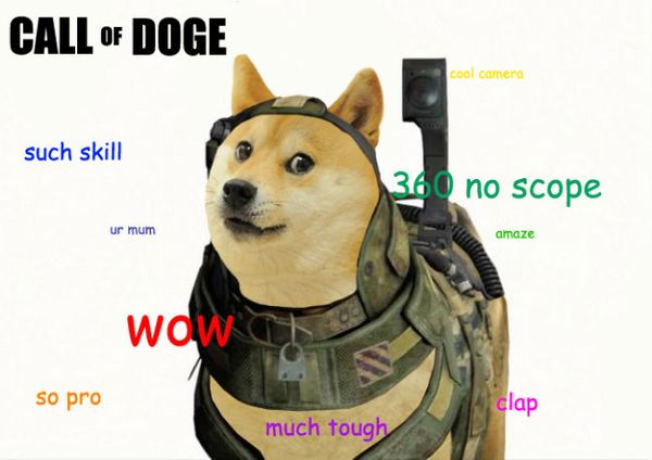 Funny Doge Jokes Picture