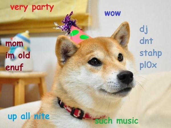 Funny Doge Meme Original (2)