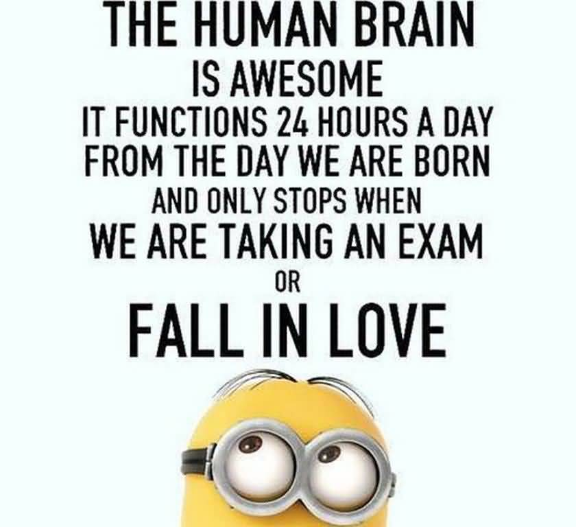 Funny Quotes About Love 07