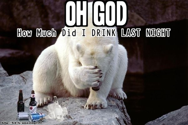 Funny alcohol memes image