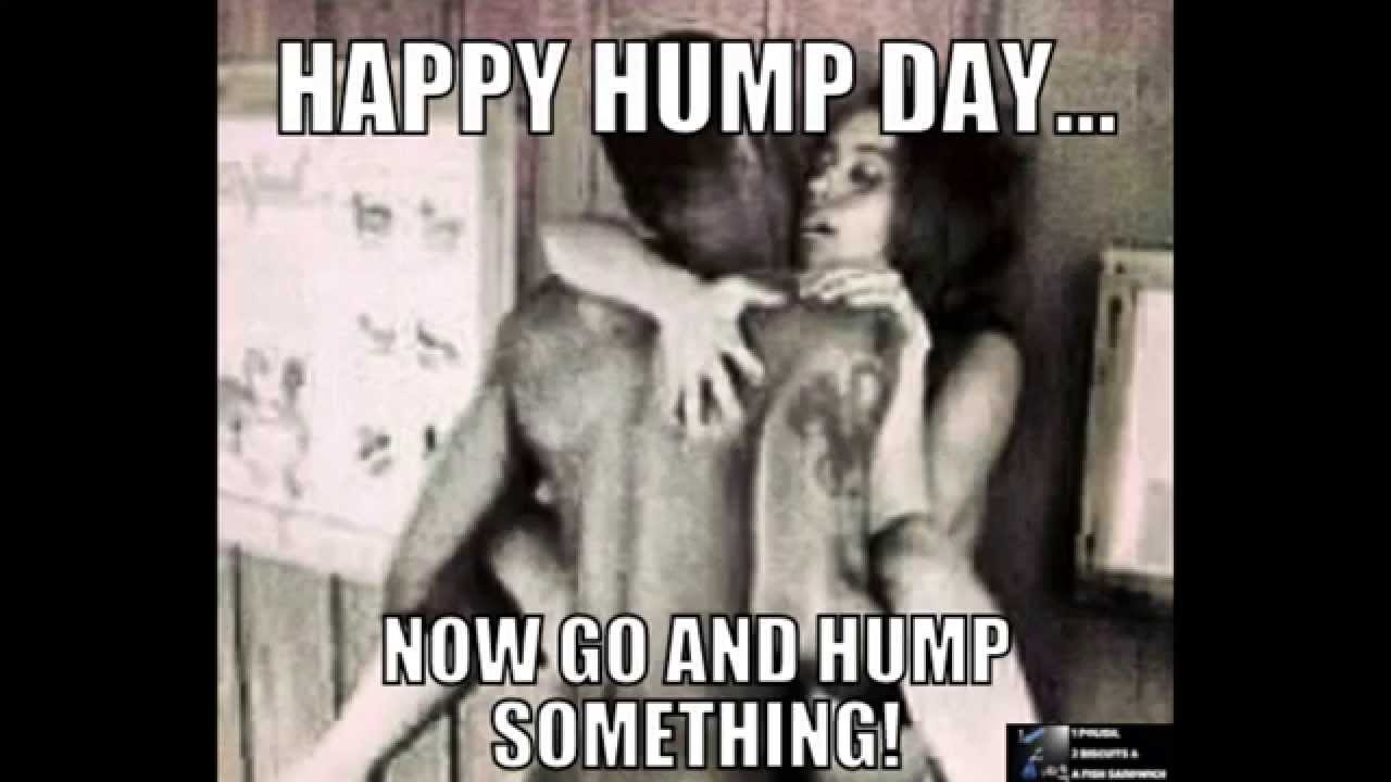 Happy Hump Day.. Now Go And Hump Something!