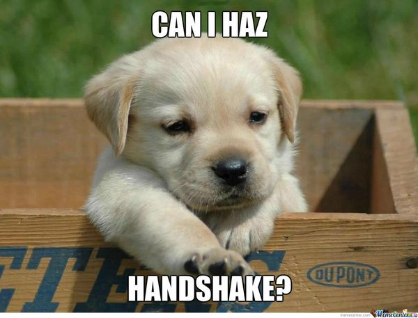 Hilarious funny puppy memes image