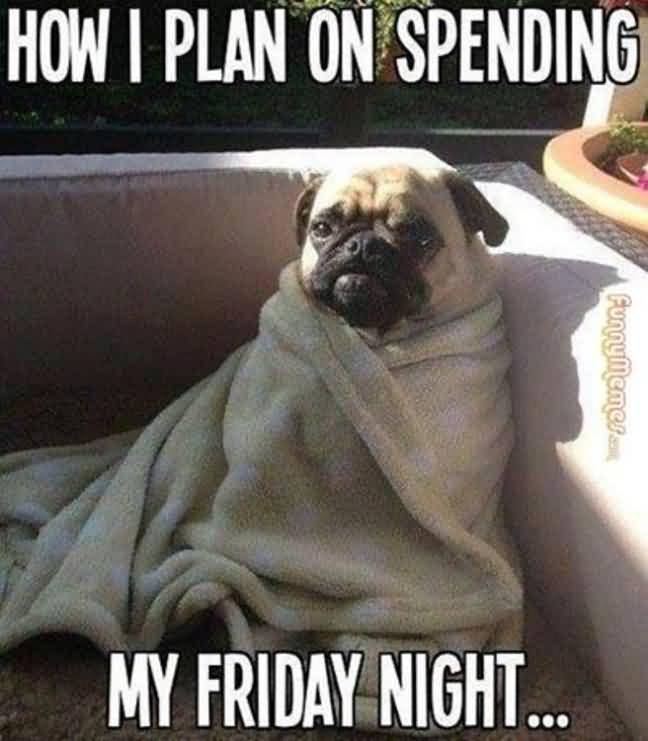 How I Plan On Spending My Friday Night