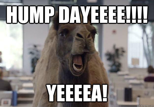 Hump DayEEEE!!!! YEEEA!