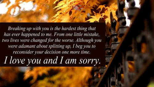 I M Sorry Love Quotes For Her 02