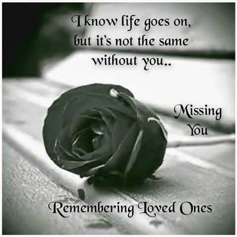 In Memory Of Our Loved Ones Quotes 19