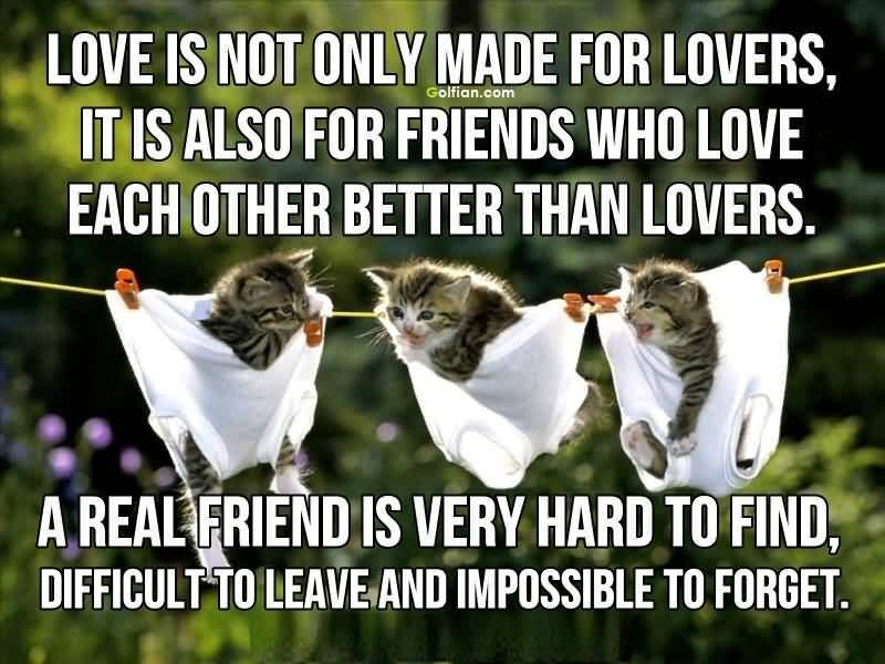 Inspirational Quotes About Love And Friendship 02