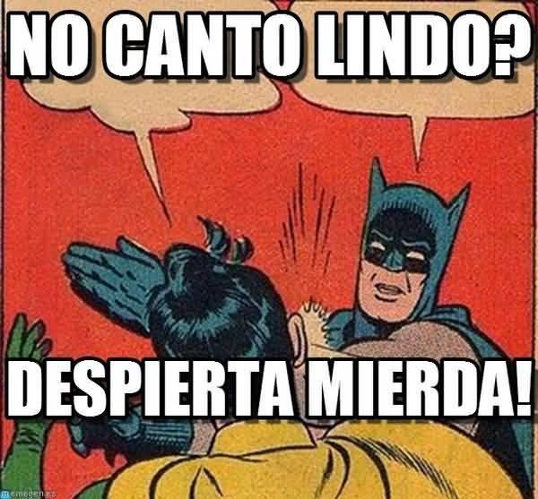 Memes de Batman y Robin en Espanol Pictures