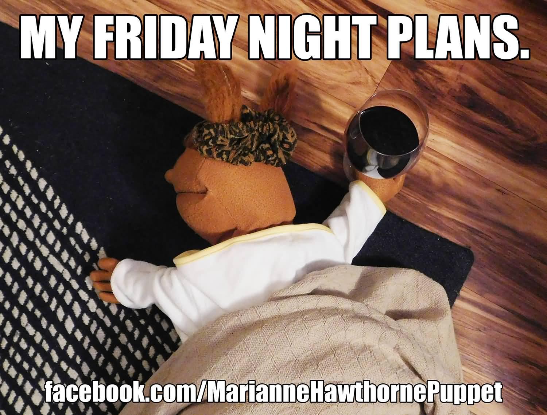 My Friday Night Plans