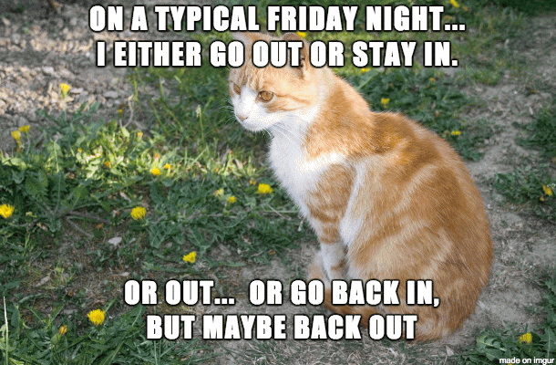 On A Typical Friday Night I Either Go Out Or Stay In. Or Out.. Or Go Back In But Maybe Back Out