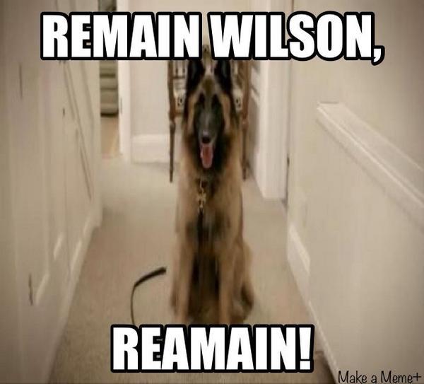 Remain Wilson Reamain!Friday Night Meme