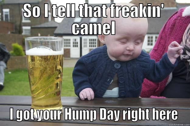 So I Tell That Freakin Camel I Got Your Hump Day Right Here