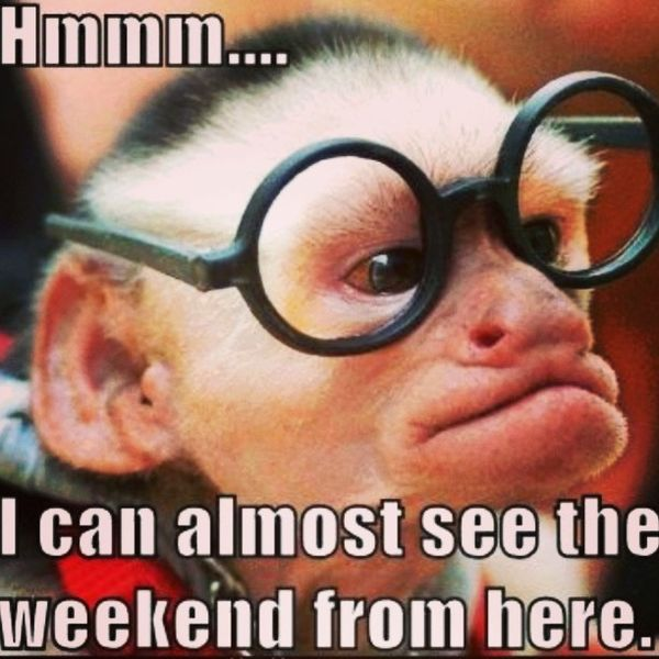 Weekend Is Here Meme Photos (3)