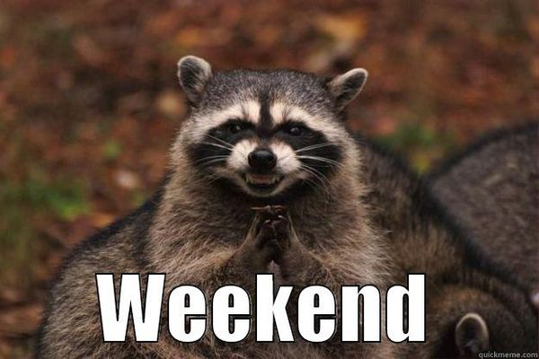 Weekend Is Here Meme Photos
