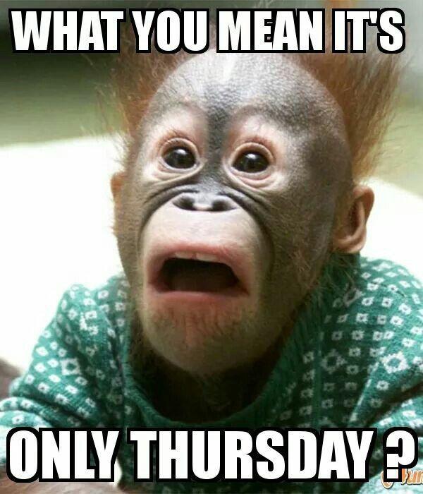 funny thursday meme image