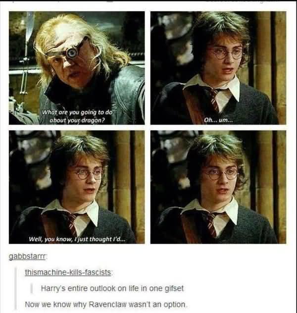 Amusing silly harry potter meme photo