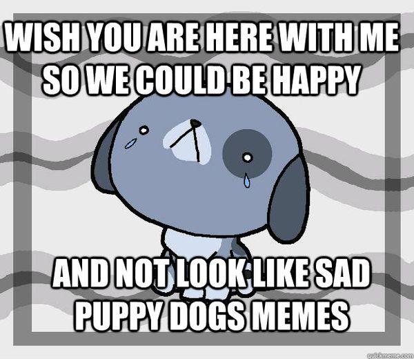 Amusing wish you were here miss you meme wallpaper